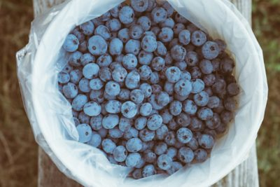 Alimentazione frutta